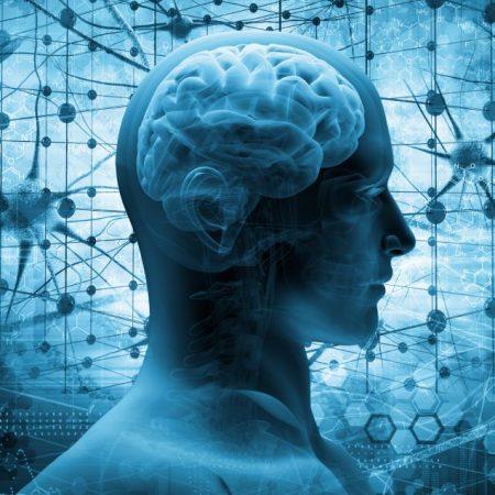 Neurology and Neurosurgery_A